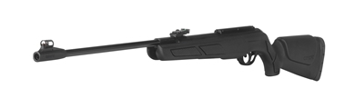 Picture for category Air Rifles