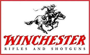 Picture for brand Winchester